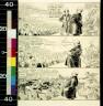 John T McCutcheon / A study in public interest / 1920?