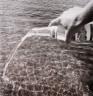 Dag Alveng / Watering Water / 1981