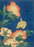Katasushika Hokusai / Canary and Peony / 1825 - 1829