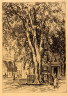 C.H. White / The Majors, Salem / 1907