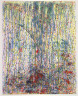 Brian Shure / Waterfall / 1988