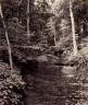 William H. Rau / Owasco Lake, Cascade Glen, for the Lehigh Valley Railroad / 1899