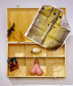 Various / ACT UP Art Box / 1994