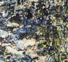 Joseph Raffael / Water Painting VII / 1973