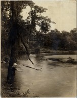 View of river