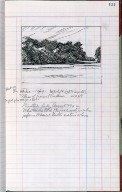 Artist's ledger - Book III: P. 121 MASS OF TREES AT EASTHAM
