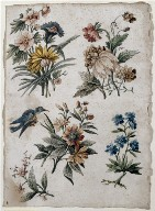[Floral Designs with a Blue Bird, Page of Floral Design with a Blue Bird]