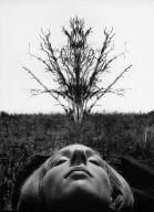 Sleeping Woman Under Tree