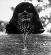 Female Portrait with Tree