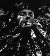 Head in Tree