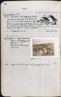 Artist's ledger - Book II: P. 42 JENNESS HOUSE (III) JENNESS HOUSE (IV)