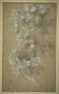 [Sketch of Foliage and Branches, Study of Foliage, Tree Study, Study of Trees, Foliage]