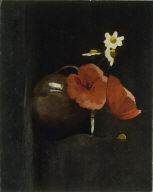 [Flowers: Poppies and Daisies, Fleurs, coquelicots, et marguerites]