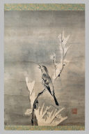 Bird on a Snow-Covered Plum Branch