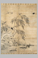 Birds, Ducks, and Willow Tree