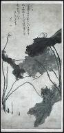 Lotus: Homage To Xu Wei