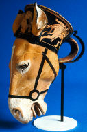 Rhyton (drinking horn) in the shape of a donkey's head