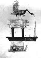 A Peacock Basin from the Book of Knowledge of Ingenious Mechanical Devices