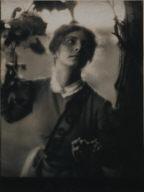 The Arbor (Julia Hall McCune)