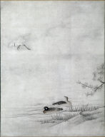 Flowers and Birds in a Spring Landscape