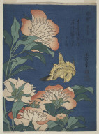 """Herbaceous Peony and Canary from the series """"Small Flowers"""""""