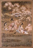 Partying Beneath Blossoming Cherry Trees