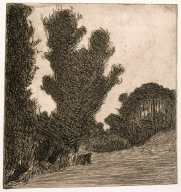 Les grands arbres (The Large Trees)