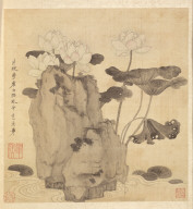 Paintings after Ancient Masters: Lotus and Rocks