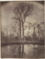 [The Park at Sceaux [April 1925, 7a.m.], Parc de Sceaux [Avril 1925, 7 h. matin]]