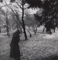Figure in the Pear Orchard
