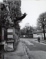 Yves Klein Saut dan le Vide, Paris