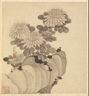 Paintings after Ancient Masters: Chrysanthemum and Rock