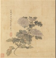 Paintings after Ancient Masters: Chrysanthemum