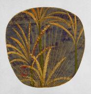 Corn and Pampas Grass Fan: Pampas Grass