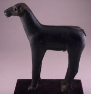 Horse (Capadocian)