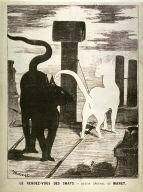 Le rendez-vous des chats (The cats' rendezvous) from La chronique illustré