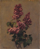Spray of Purple Lilac
