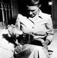 Monica Flaherty feeds her pet coon Zazu from a nursing bottle