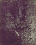 Piscator, No. 2