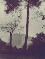 Edinburgh-trees in foreground