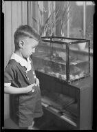 Boy with Fishtank