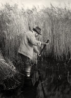 [A Reed-Cutter at Work, Life and Landscape on the Norfolk Broads]