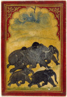 Playing Card from a Mughal Ganjifa: Five Galloping Elephants--Six of the Gajpati Suit