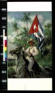 Cuban standard bearer