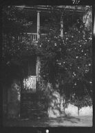Gate to house garden, New Orleans or Charleston, South Carolina