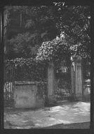 Wrought iron gate, New Orleans or Charleston, South Carolina