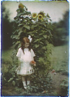 Nina Skidmore standing in front of a large sunflower plant