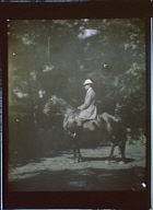 Man on horseback in a wooded area
