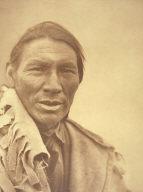A Cree