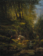 Trout Stream in the Forest
